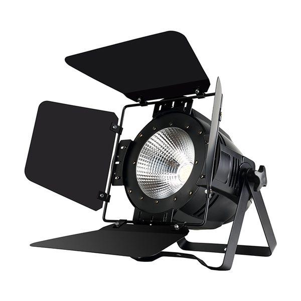 RGBW 4in1 COB LED Par